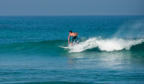 Surfing and the World Surf Pro - Bushy Lake Chalets